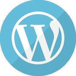 website design austin